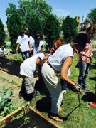 Arise Detroit Garden Day