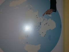 United Nations35